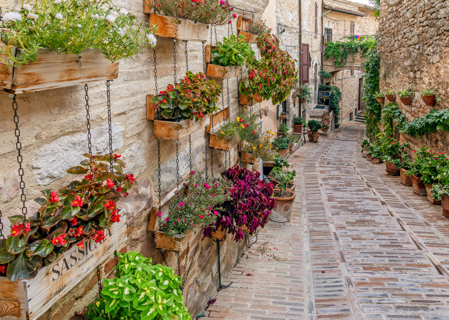 Print Art Spello Italy Hanging Wall Flowers