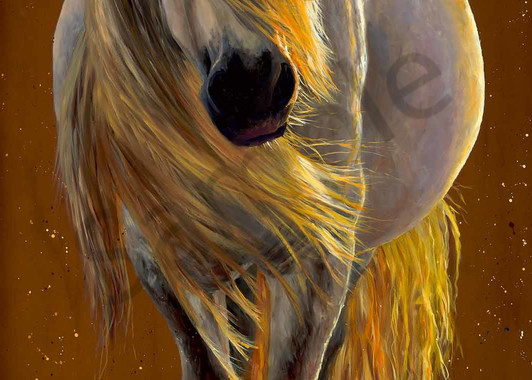 My Enchanted Little Round Pony