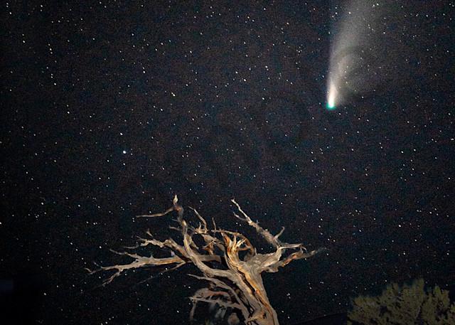 1644  Star Wizard Comet Art | Cunningham Gallery