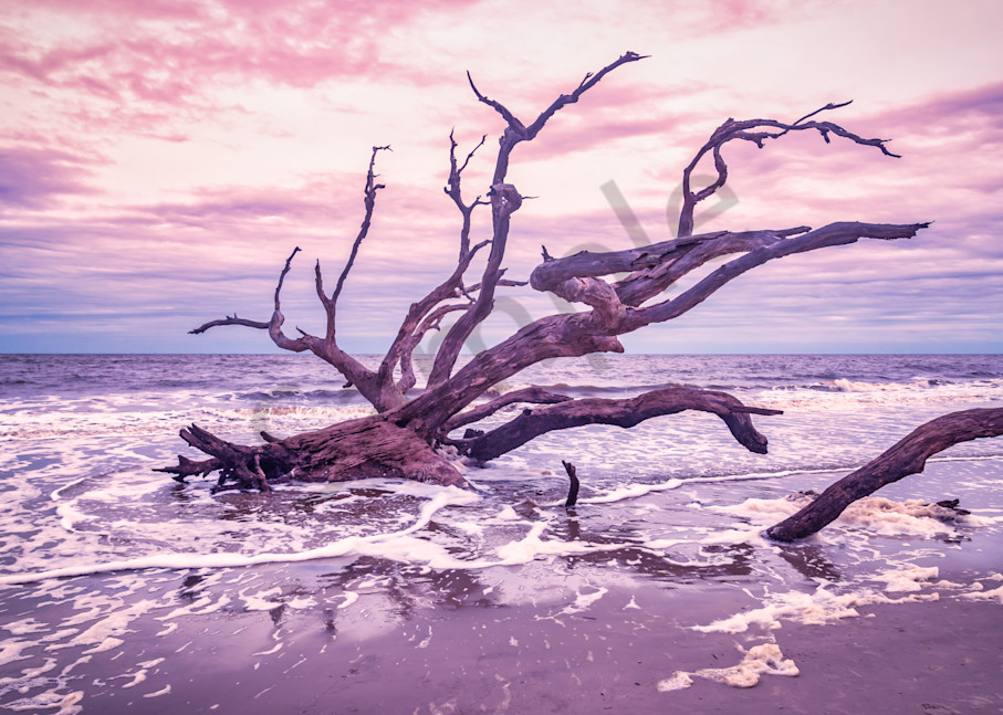 Jekyll Island Sunset | Susan J Photography