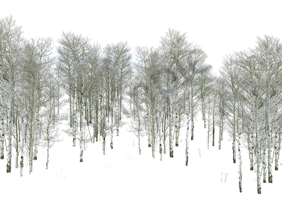 Winter Walk Art | Cunningham Gallery