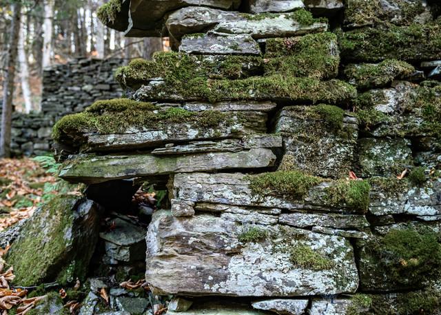 Mossy walls