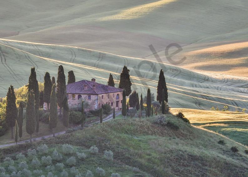 Belvedere Photograph