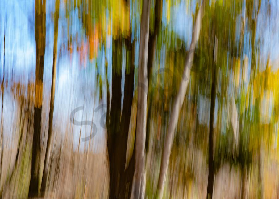 Autumn Afternoon Photography Art   Kim Bova Photography