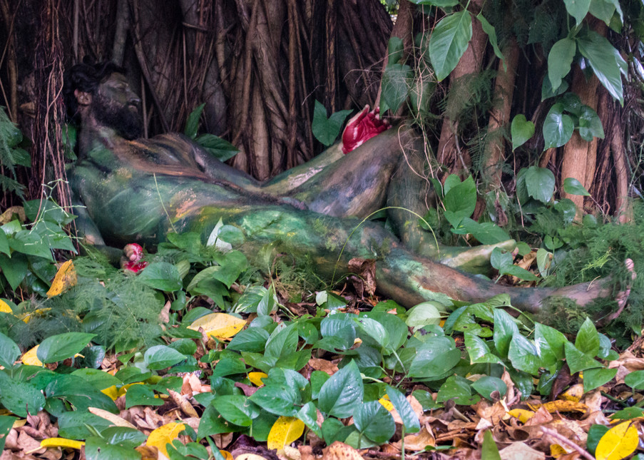 2014 Tree.Roots Florida Art   BODYPAINTOGRAPHY