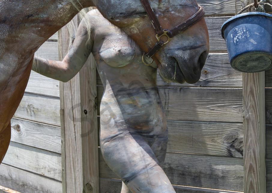2013 Fence Horse Florida Art   BODYPAINTOGRAPHY