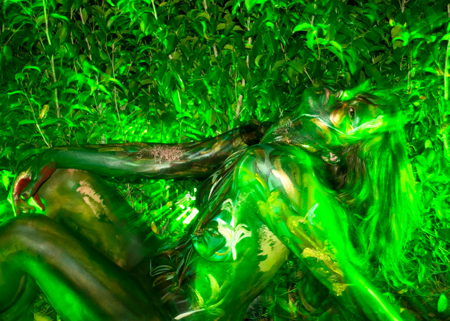 2012  Cafeina.Greens  Florida Art | BODYPAINTOGRAPHY