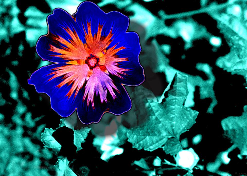 Flower 46 Art | Cincy Artwork