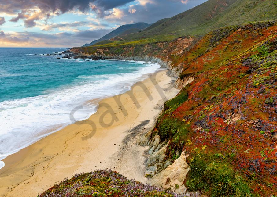 Print Art Big Sur California California Coast