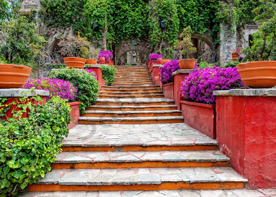 Print Art Guanajuato Mexico Barrera Gardens