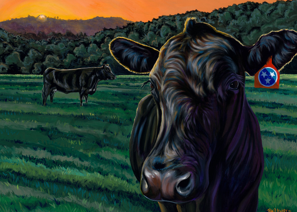 Angus cattle and Tennessee landscape paintings by Texas artist, John R. Lowery, available as art prints.