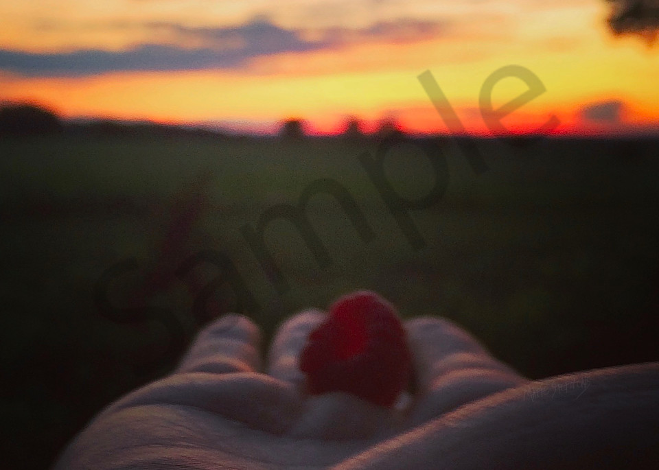Have you ever looked into the center of a freshly picked raspberry when the sun's rays are shining through it at sunset?