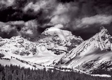 Welcome to the Icefields