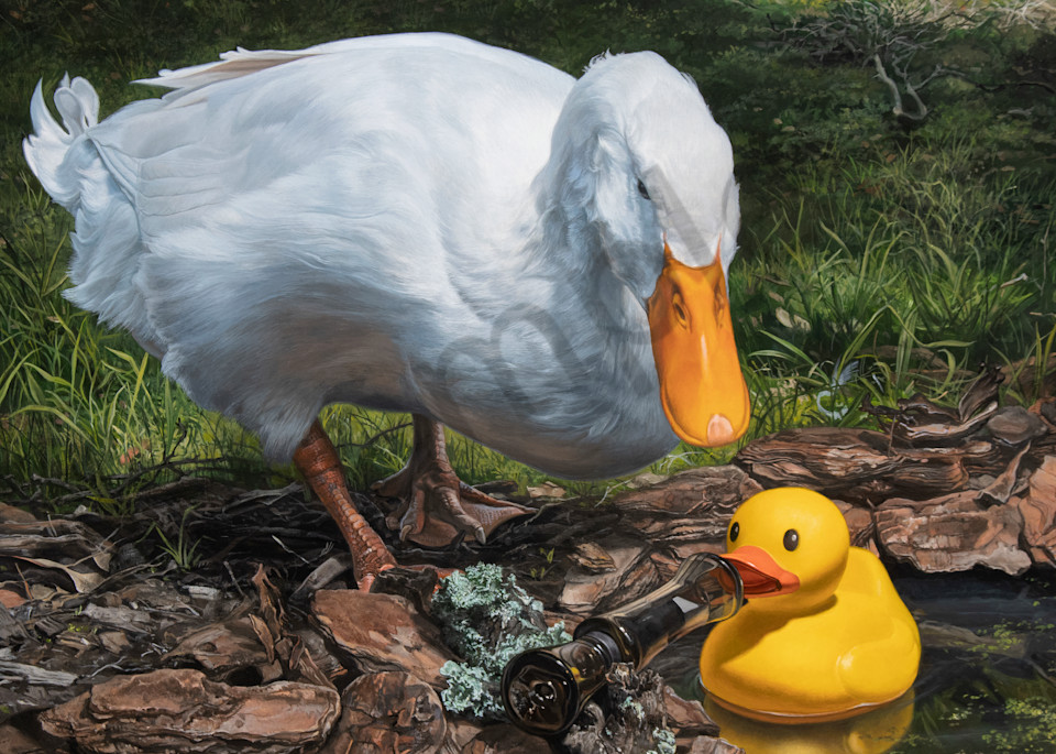 """""""If It Looks Like a Duck..."""" print by Kevin Grass"""