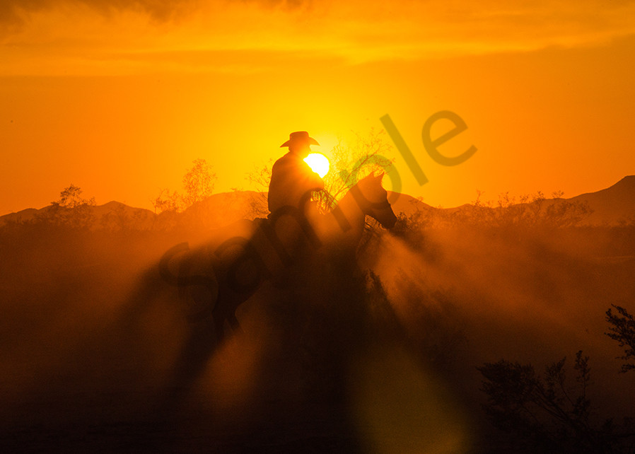 Cowboy into the Sunset