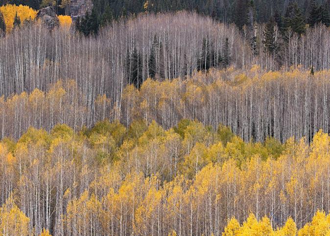 Autumn Waves Photography Art | Scott Cordner Photography
