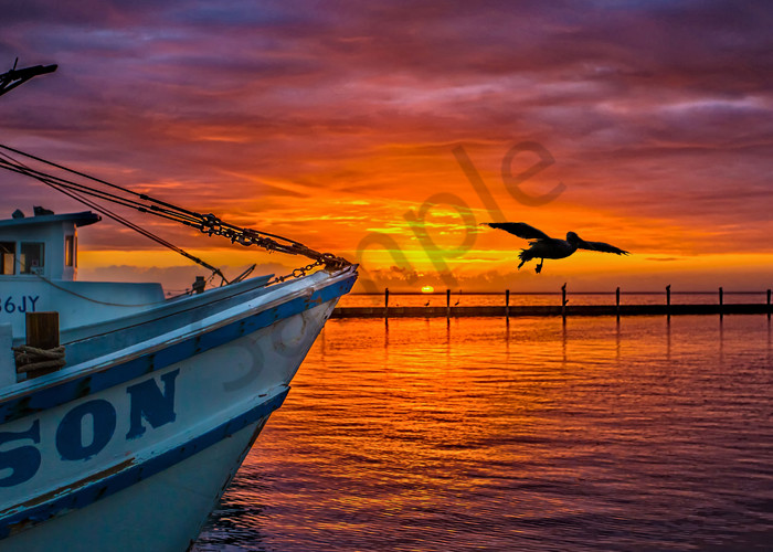 Here Comes The Son Photography Art   John Martell Photography