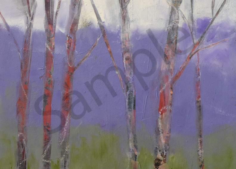 Waiting For Spring Art   Connie Rodriguez Fine Art