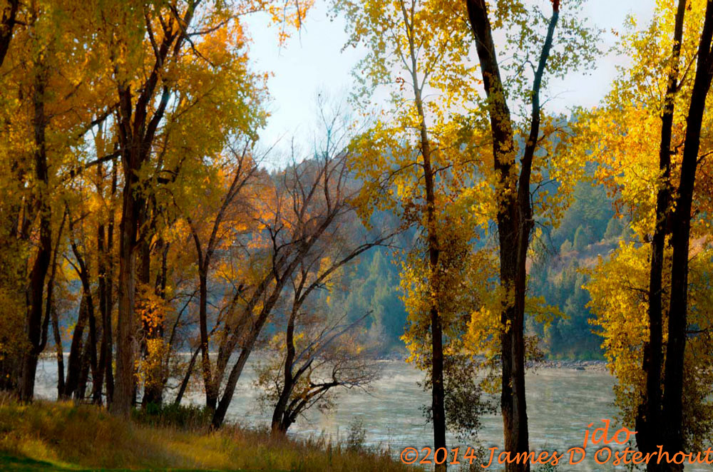 flyfishing,south fork of the snake river
