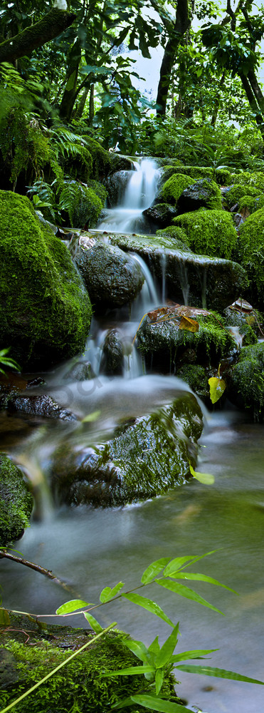 Hawaii Landscape Photography Peaceful Streams By