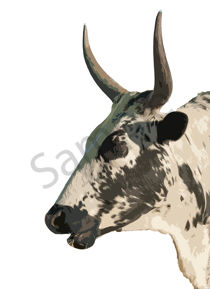 Nguni side view black face