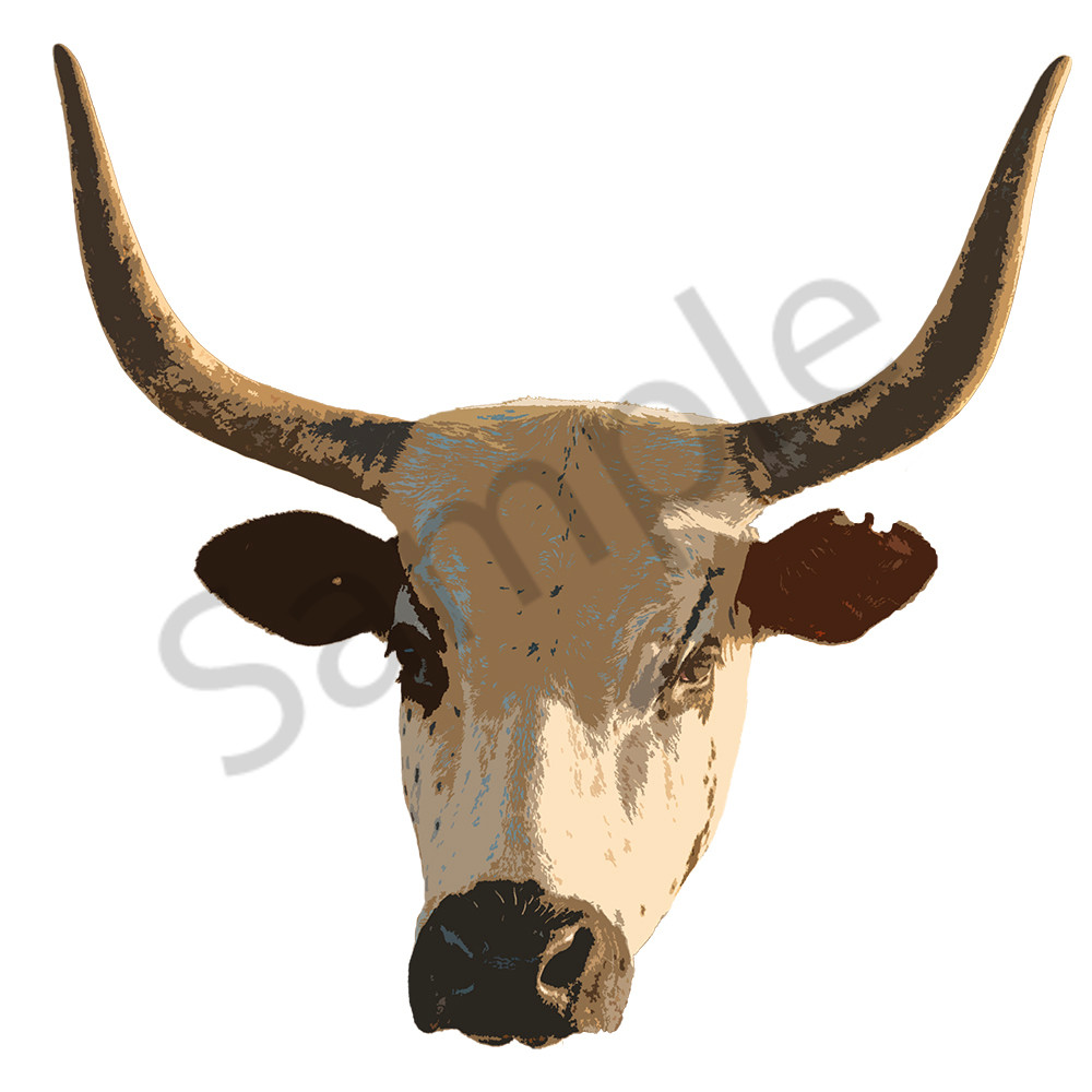 Nguni Headon pop art