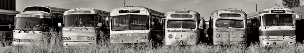 an image of old retired city busses in northern california just made for a black and white panorama photo