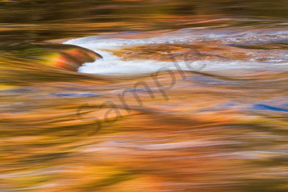 Autumn Rush