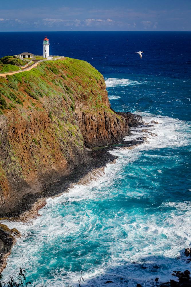 Hawaii Photography Kilauea By Shane Myers