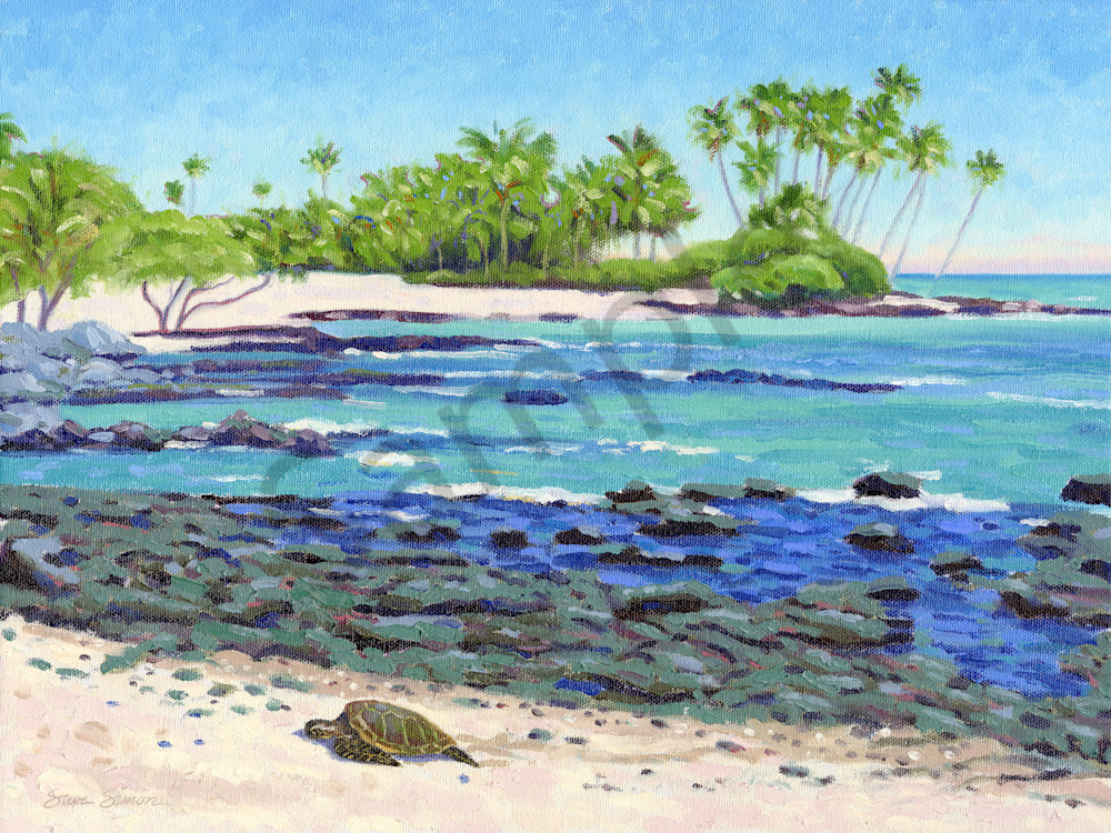 Beach near the Fairmont Orchid