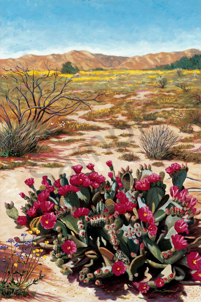 Beavertail Cactus Near Joshua Tree