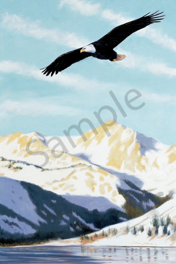 Bald Eagle Soaring Over Twin Lakes