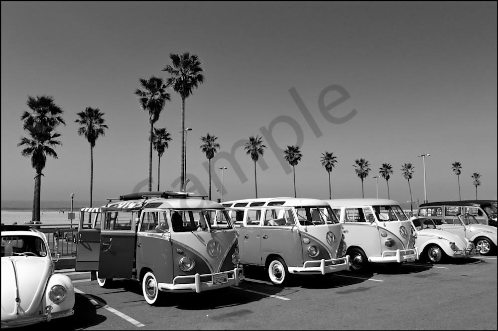 Vintage VW Buses in black and white.