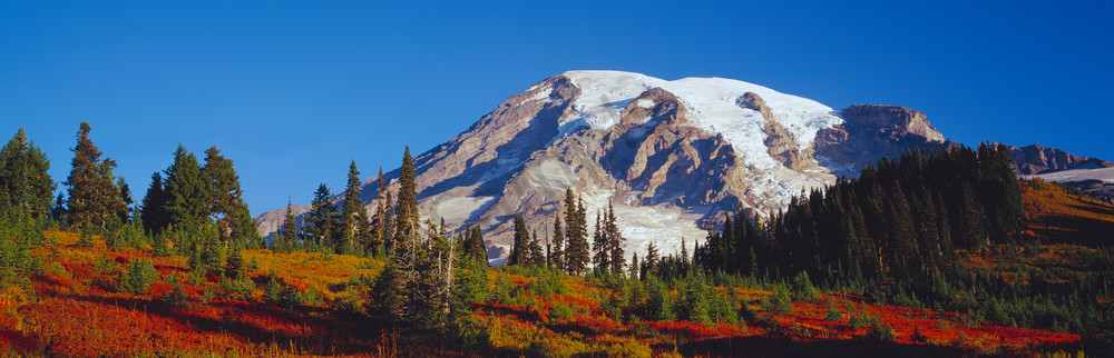 Autmun colors and majest Mt. Rainier