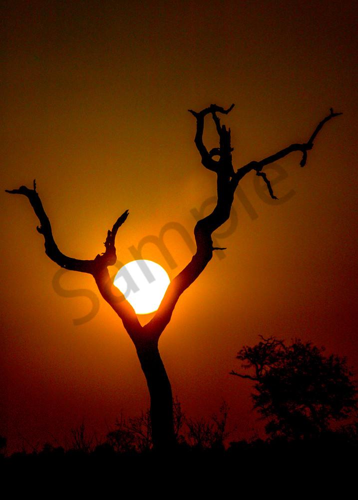 I Am Sun's Source