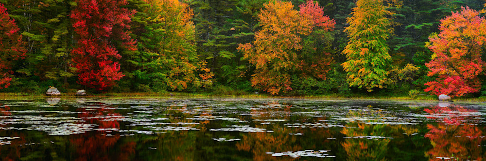 Autumn Reflection Photography Art | Scott Cordner Photography