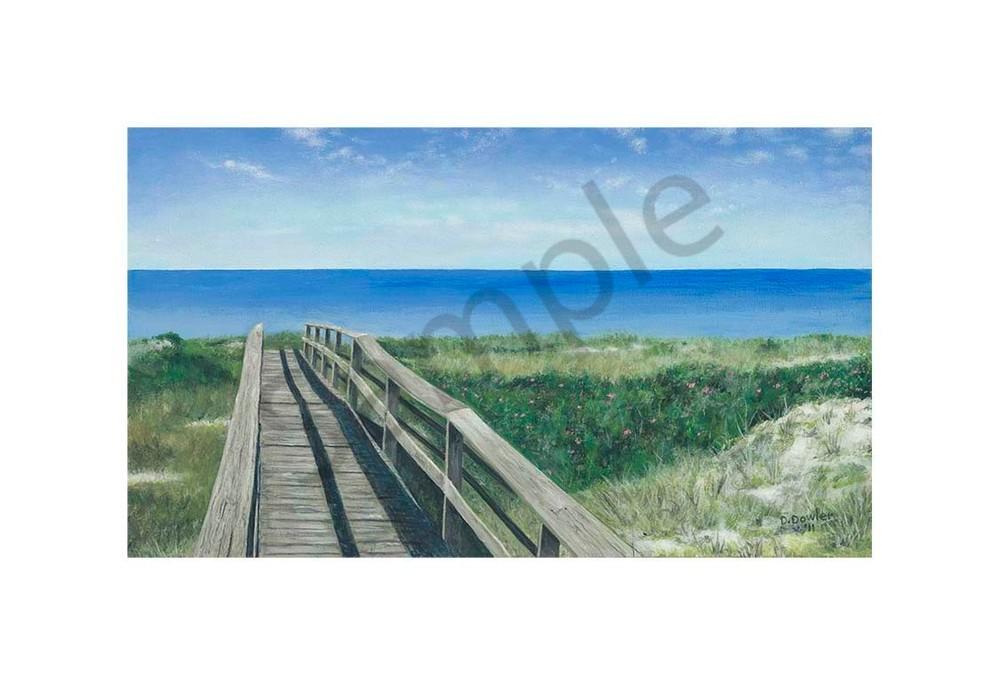 Cape Boardwalk