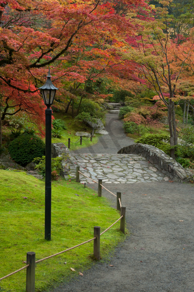 Fall colors and path, Japanese Garden, Seattle