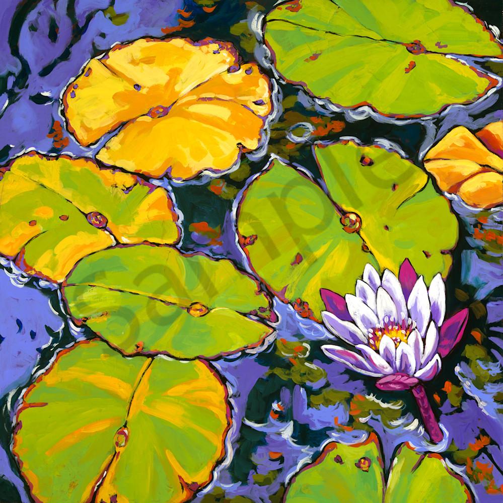 Lily Pads Dance In Light Art   Sally C. Evans Fine Art