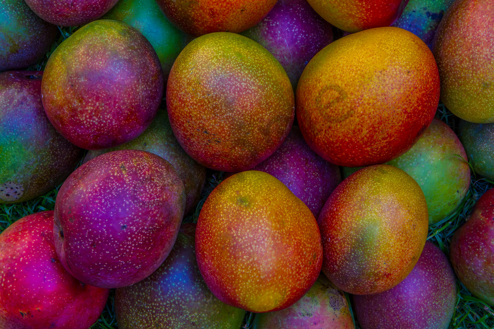 Hawaii Photography | Many Mangoes by William Weaver