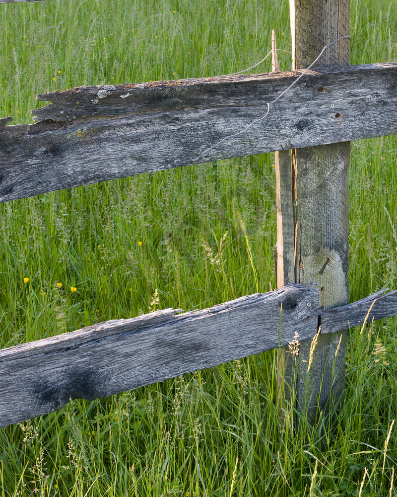 Countryside wall art old wood fence