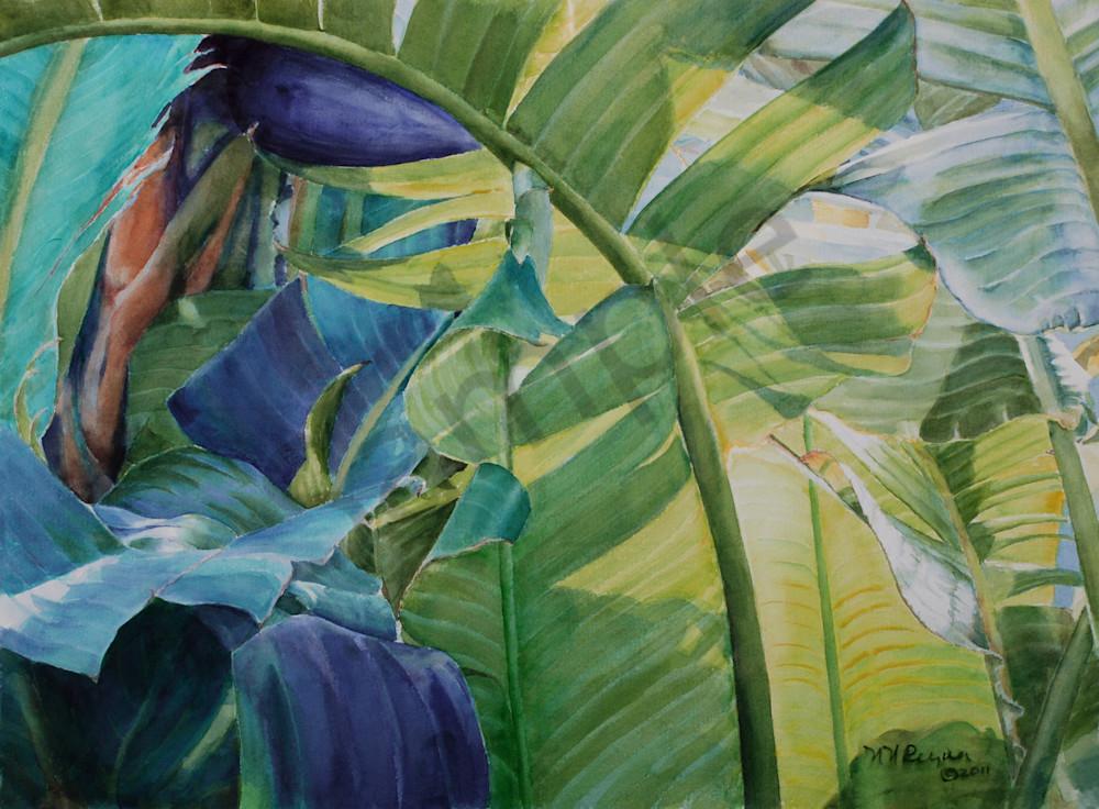 Sunlit Art for Sale