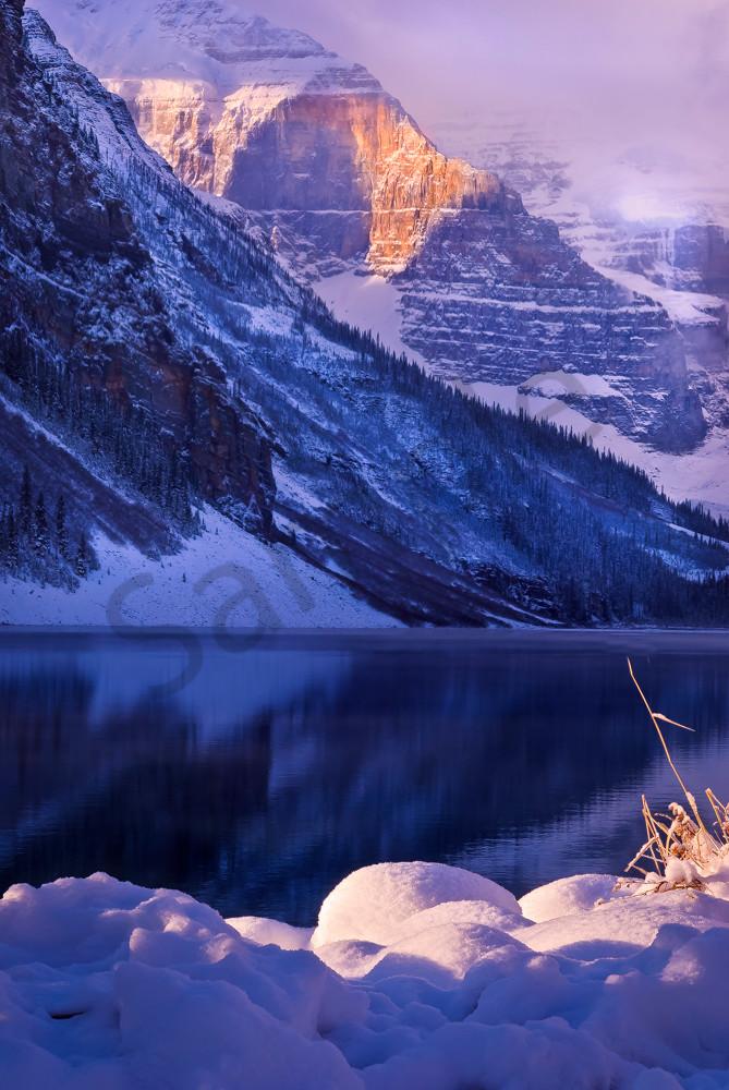 Lake Louise & Lefroy's Morning Glory