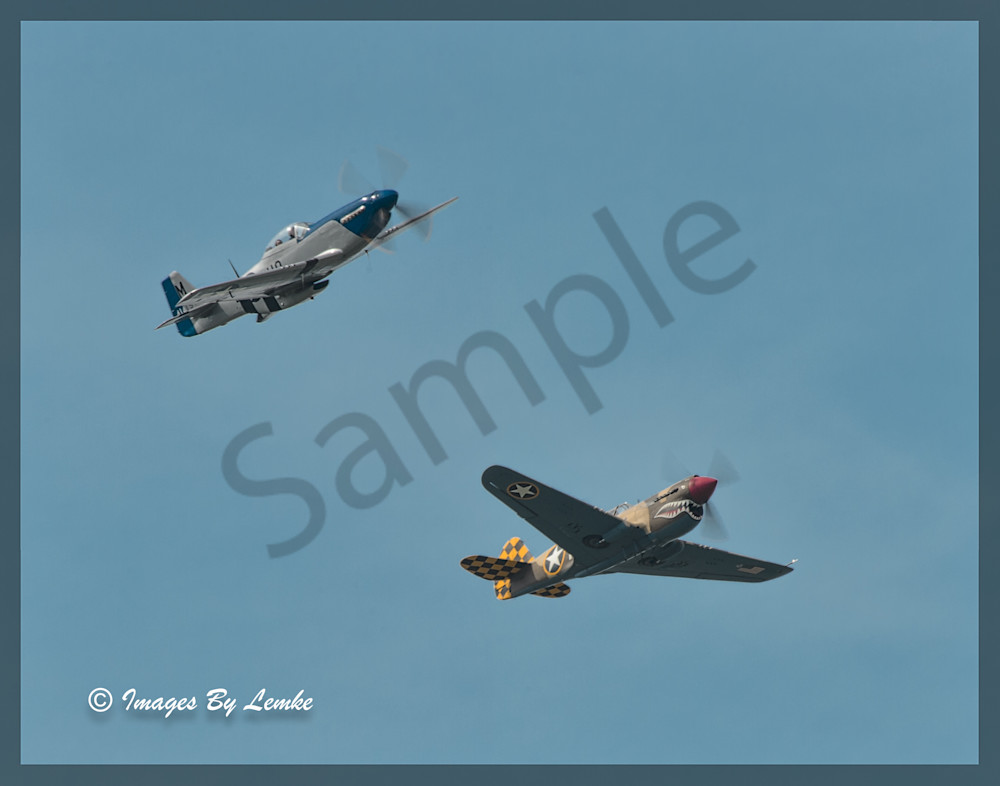 P-40 Warhawk and P-51D Mustang