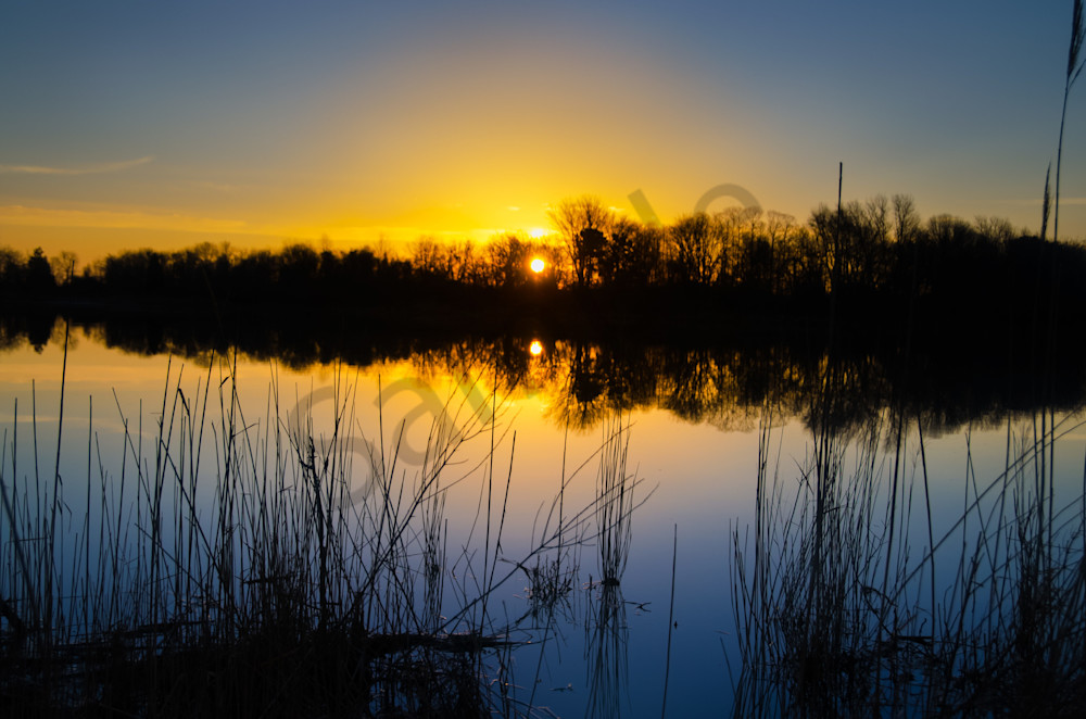 Sunrise Reedy Point Marsh Landscape Photo Wall Art by ...