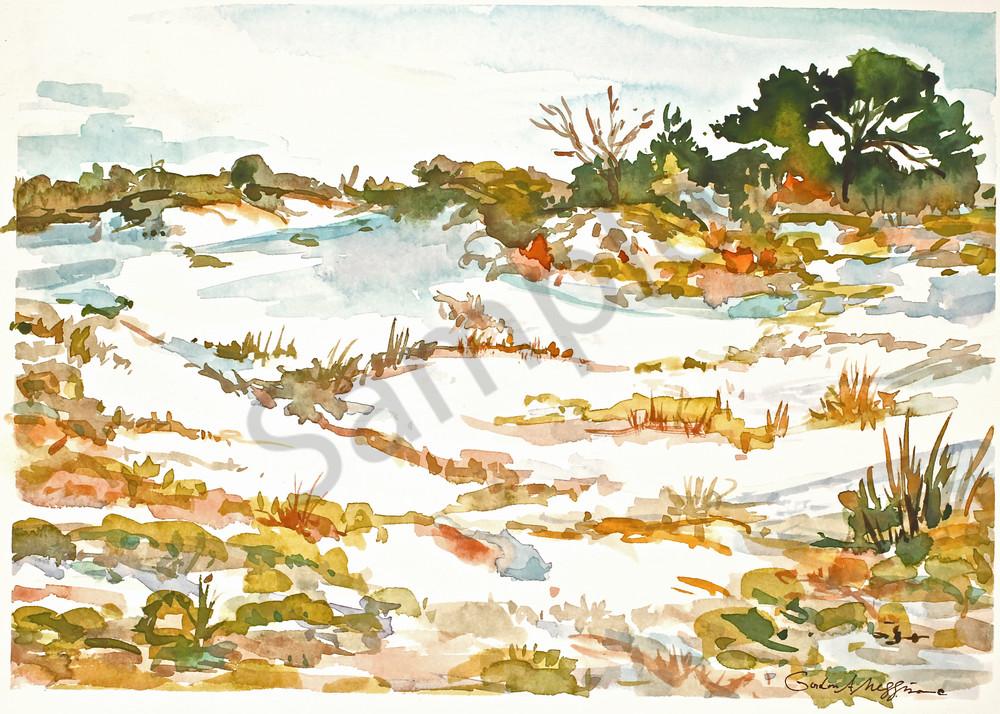 Talbot Dunes | Watercolor Landscapes | Gordon Meggison IV