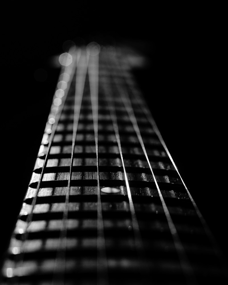 Frets and Cords Still Life Photography by Landscape and Nature Photographer Melissa Fague