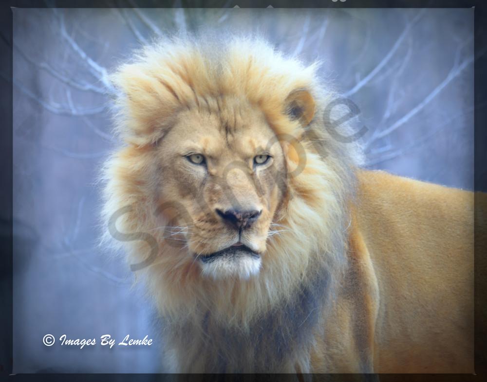 Fastasy Lion