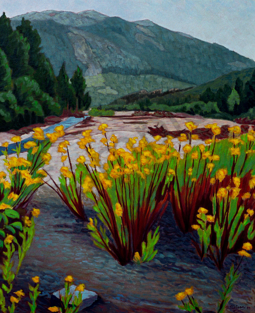 Flowering Creekbed along a stream in the Yukon -Sherry Nielsen - landscapes