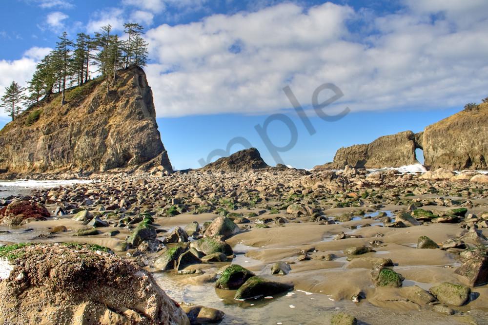 Second Beach, Washington, USA